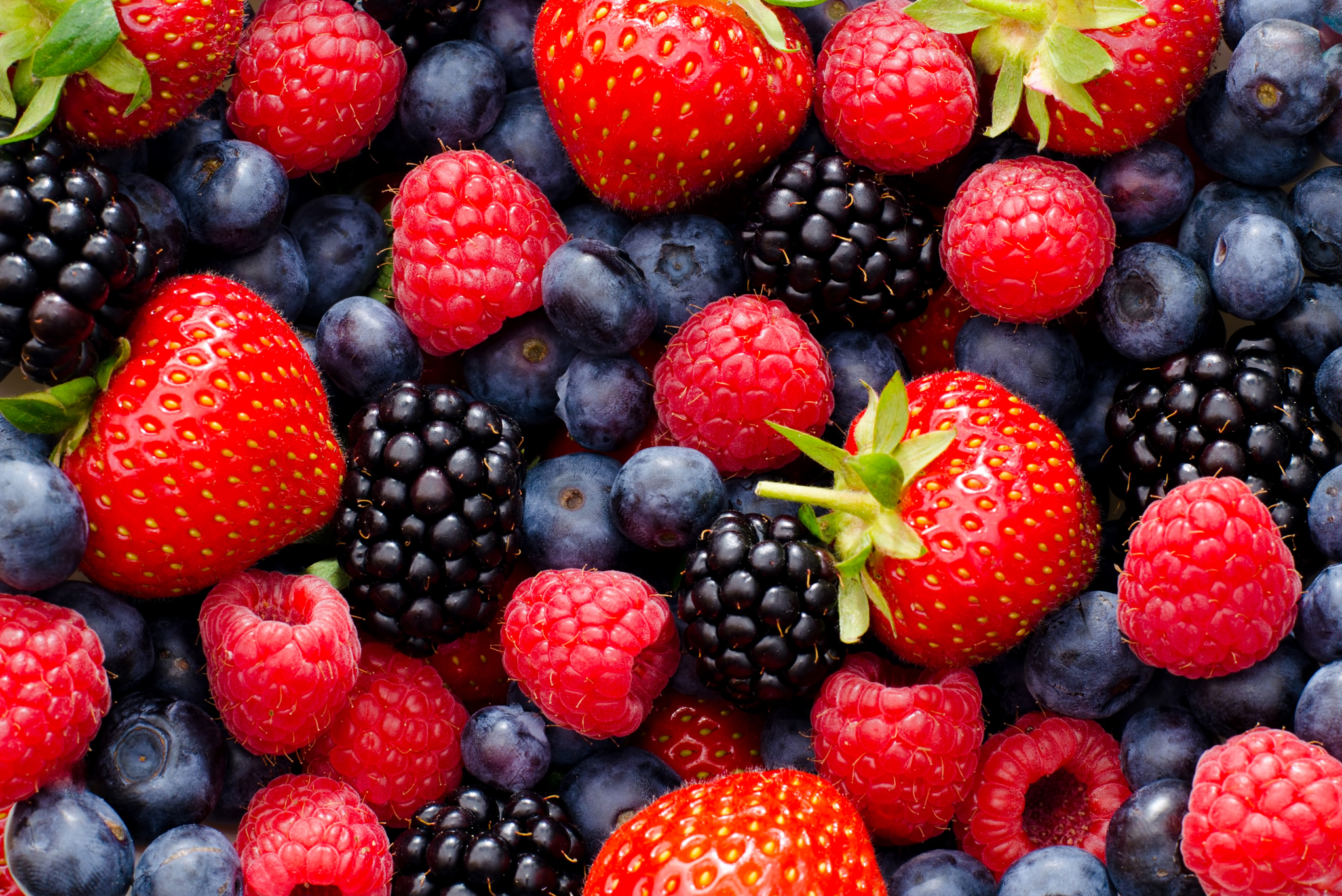 Distributors of Berries